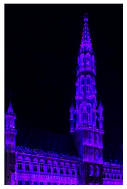 Brussels stadhuis in VN-blauw