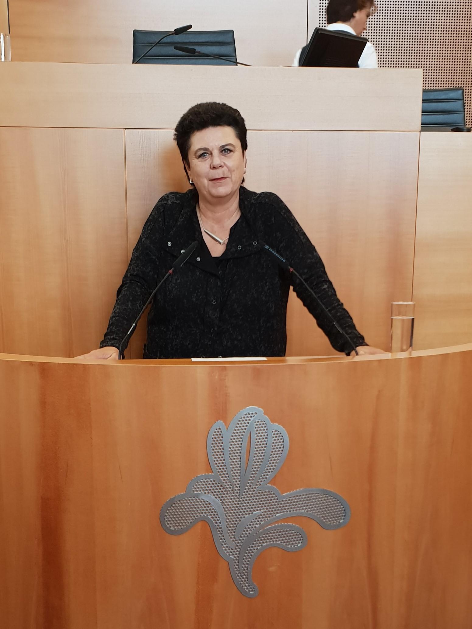 Intervention de la chef de groupe Carla Dejonghe sur la nouvelle déclaration du gouvernement
