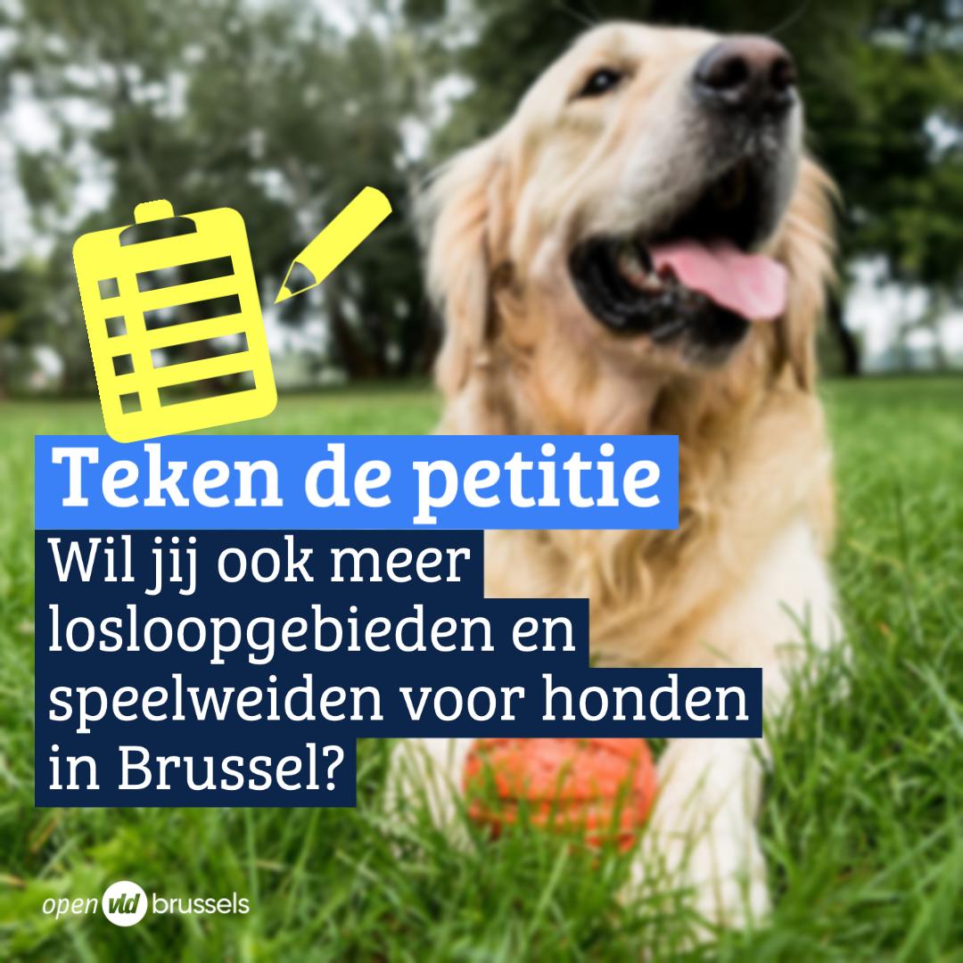 Carla Dejonghe vraagt via petitie meer plek voor honden zonder leiband