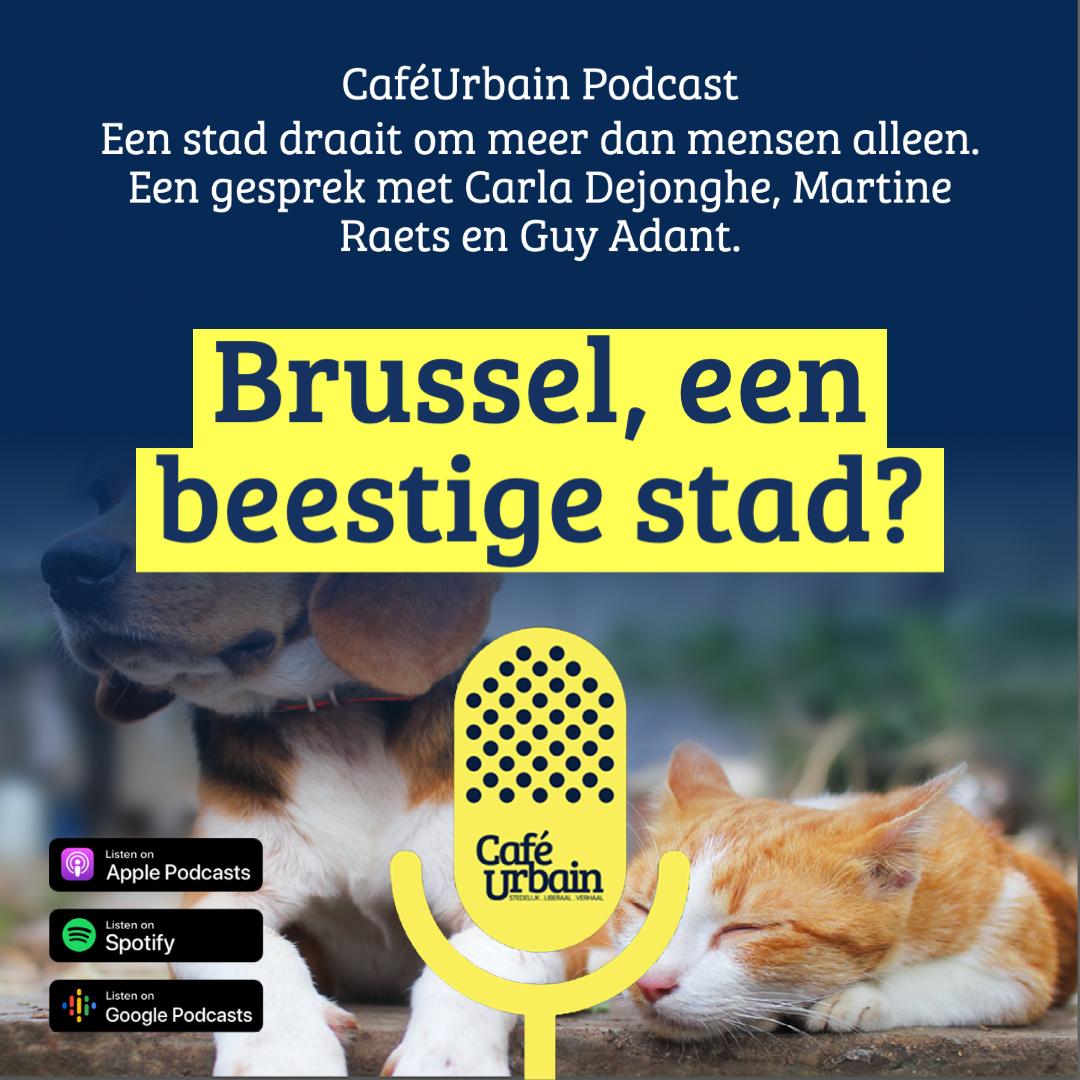 PODCAST 'CAFE URBAIN': Bruxelles, une vraie ville animalière  (Carla Dejonghe - Guy Adant - Martine Raets)