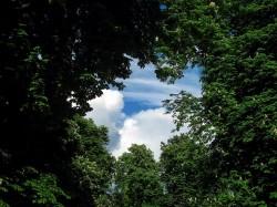 Pocket Park: Een mooi voorbeeld van goede samenwerking tussen Vlaanderen en Brussel