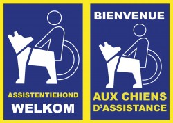 Brussels parlementslid (en gastgezin) Carla Dejonghe roept op tot sensibiliseringscampagne rond toegankelijkheid van assistentiehonden