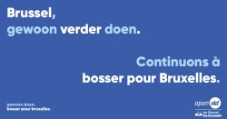 Willen we Brussel bashen of Brussel bouwen?