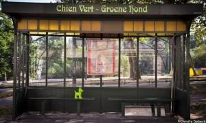 De groene hond en 'Kunst In de etalage'